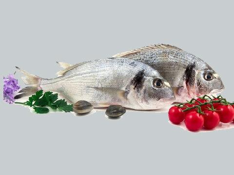 דגים טריים (גידול ים)